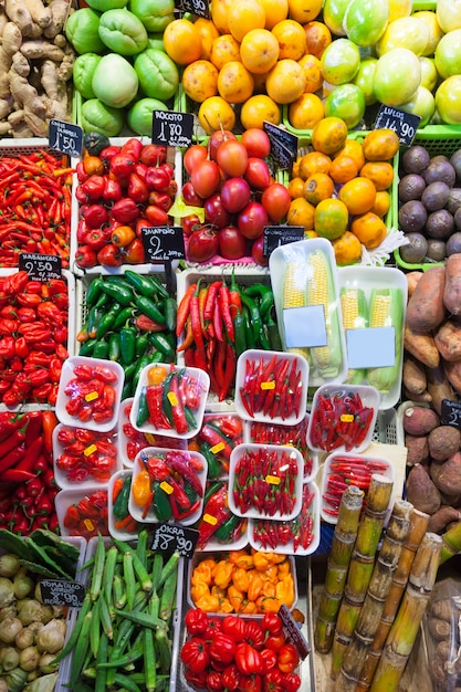 Chili pepper and other vegetables Free Photo