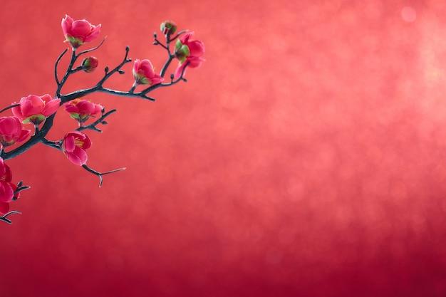 Chinese new year 2020 flowers plum blossom on red Premium Photo