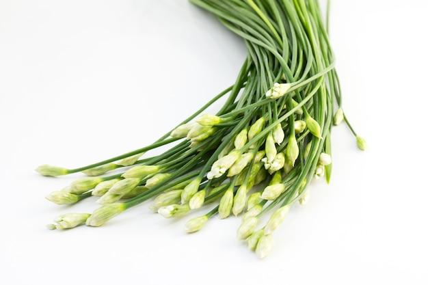 Chives flower Premium Photo