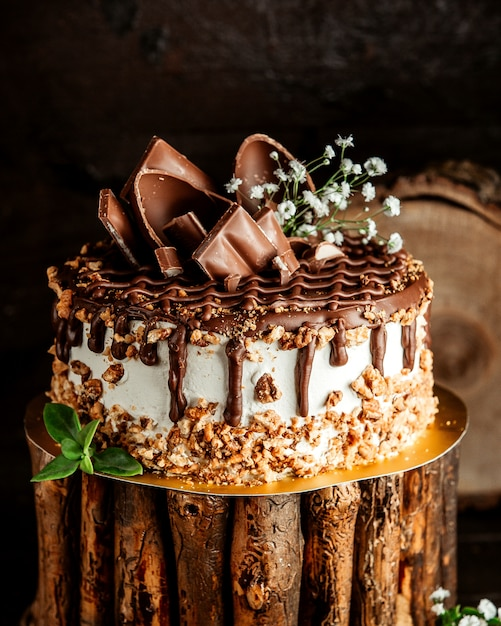 Chocolate cake with cream nuts and chocolate spread Free Photo