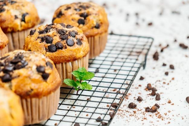 Chocolate chip muffin Free Photo