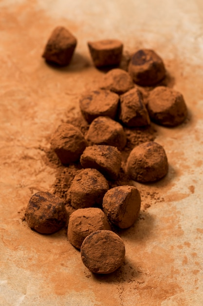 Chocolate truffle in cocoa powder Free Photo