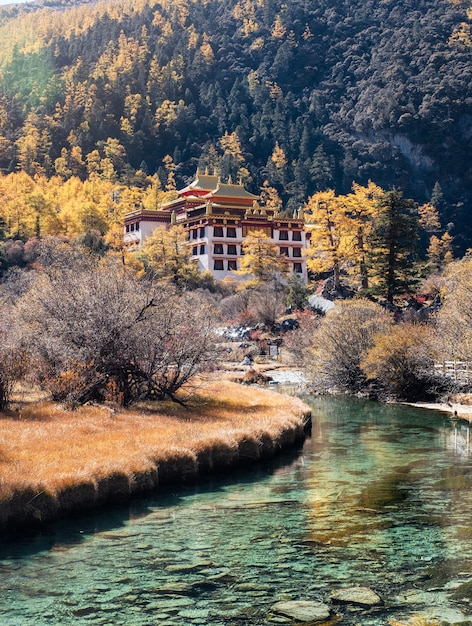 Chonggu temple with pine forest and emerald river in autumn Premium Photo