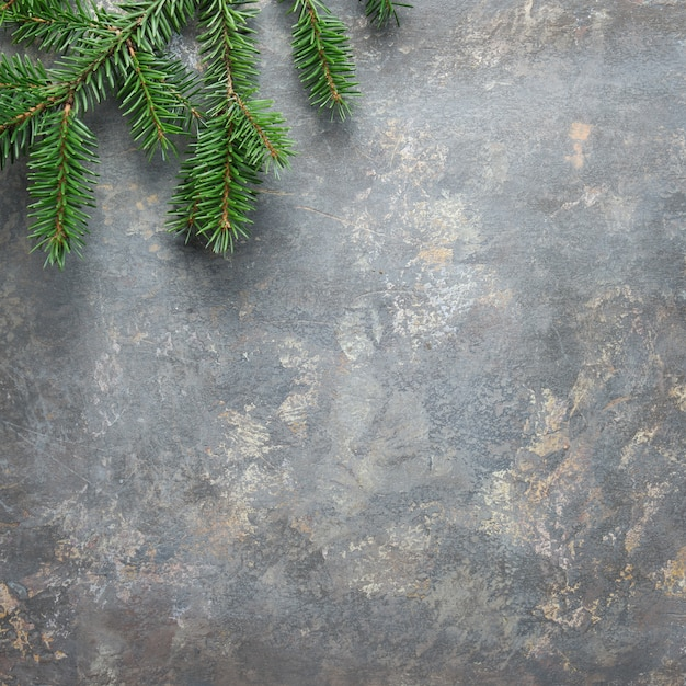 Christmas background, square composition on dark textured board with natural green fir twig. flat lay, top view from above.. Premium Photo