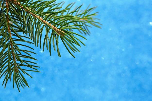크리스마스 트리의 Bokeh 분기와 파란색 배경에 크리스마스 카드 프리미엄 사진