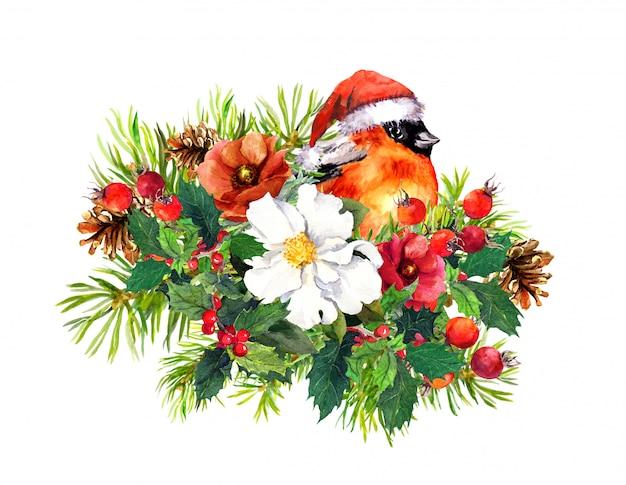 Christmas composition - finch bird, winter flowers, spruce tree,  mistletoe. watercolor Premium Photo