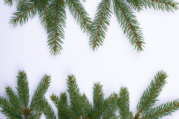 크리스마스 구성 Witg 전나무 나무 가지 절연 프리미엄 사진