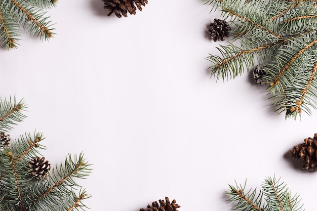 크리스마스 장식 구성 소나무 콘 가문비 나무 가지 무료 사진