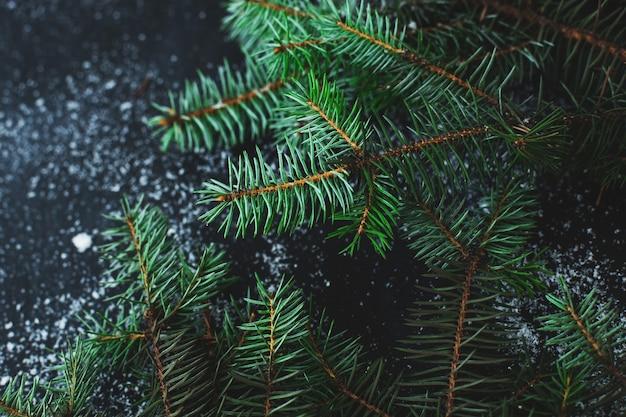 Abete di natale sulla superficie scura con la neve Foto Gratuite