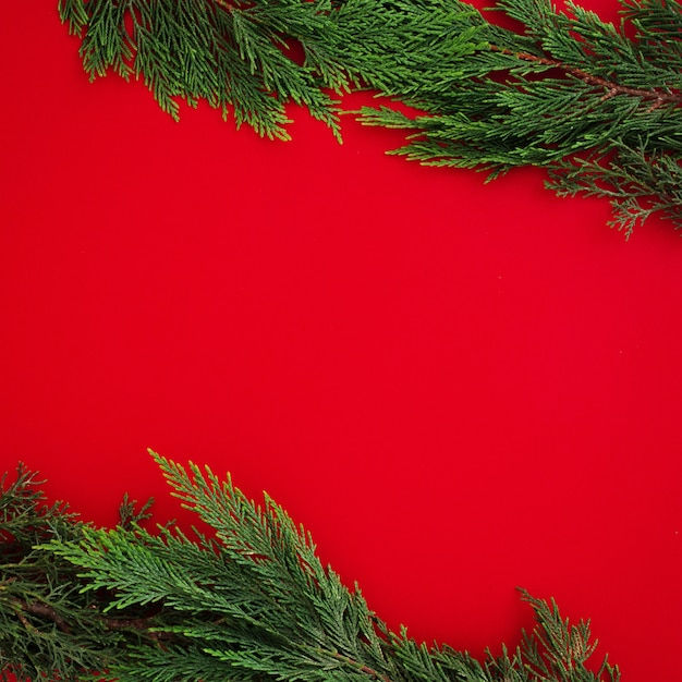 Christmas pine leaves on red background with copyspace Free Photo