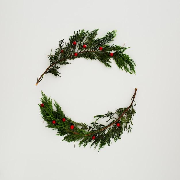Christmas pine leaves on white Free Photo