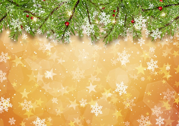 Christmas tree branches on gold star background Free Photo
