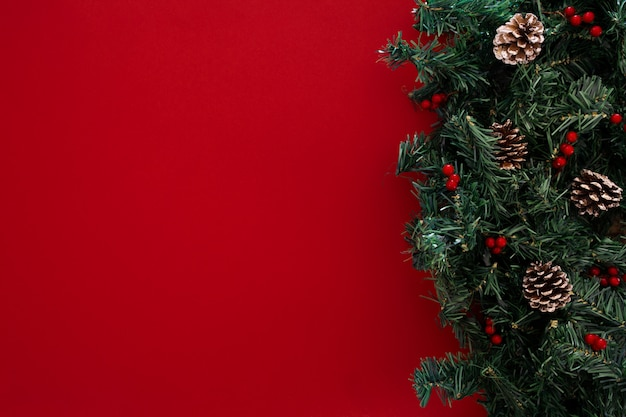 Christmas tree branches on a red background Free Photo