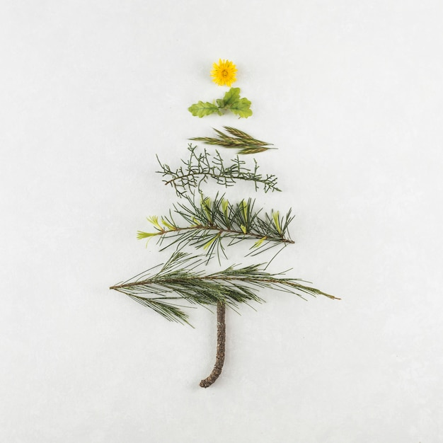 Christmas tree from different branches Free Photo