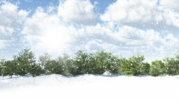 Christmas winter scene with fir trees Free Photo