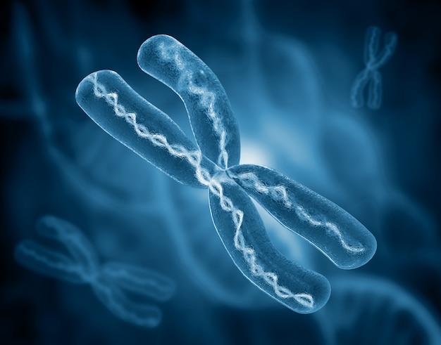 Chromosome on scientific background. 3d illustration Premium Photo