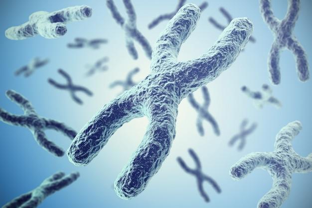 Chromosomes Premium Photo