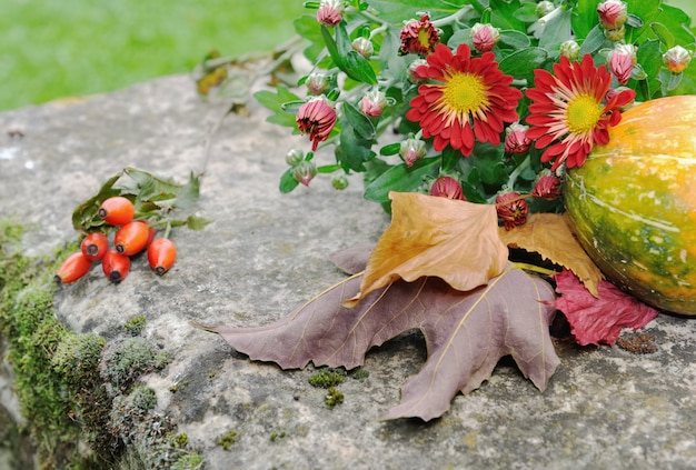 Chrysanthemum flowers and fallen leaves Premium Photo