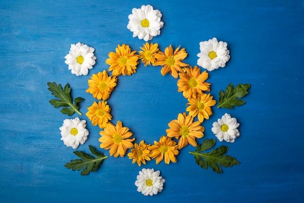 コピースペースのある菊の花。青い背景の花の丸いフレーム Premium写真