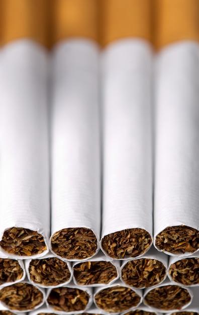 タバコ Premium写真