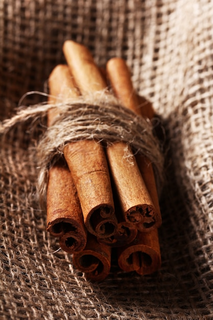 Cinnamon sticks on sack cloth Free Photo