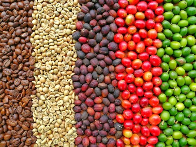 Circle of coffee bean background Premium Photo
