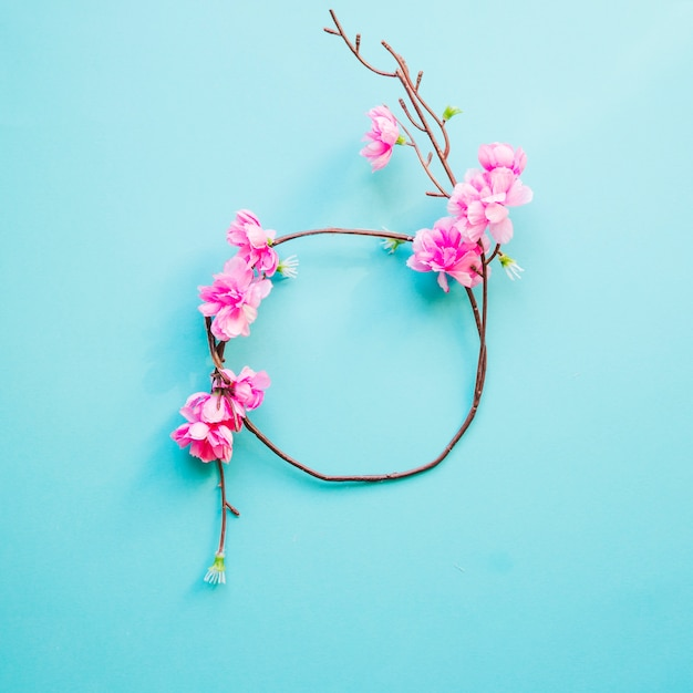 Circle from blooming twig Free Photo