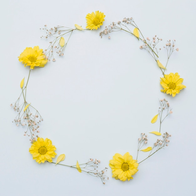 Circular frame made with yellow flowers isolated on white ...