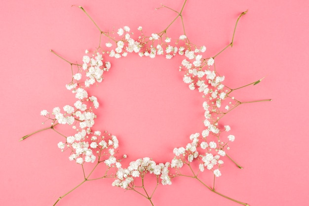 Circular shape made from baby's breath against peach background Free Photo