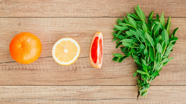 Citrus fruits and mint in row Free Photo