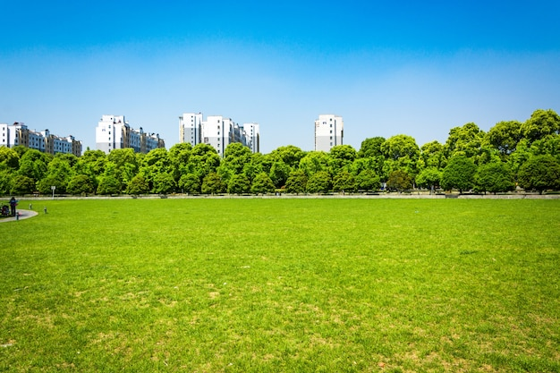 City and grass with blue sky Free Photo