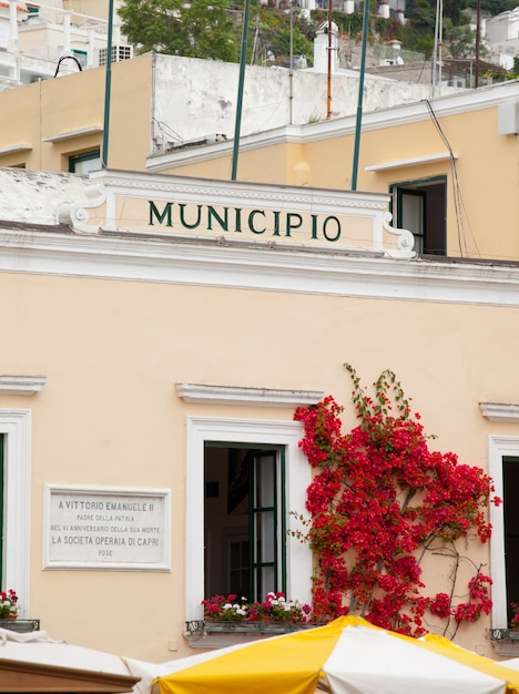 City hall capri Premium Photo