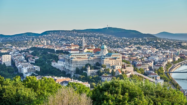 Cityscape of royal palace of budapest city Premium Photo