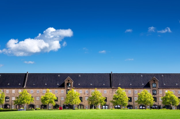 Classic apartment with clear blue sky and grass lawn in copenhagen denmark, europe Premium Photo