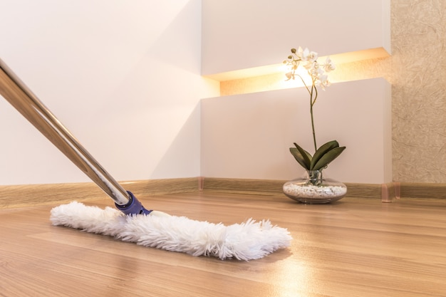 Cleaning in the home Premium Photo