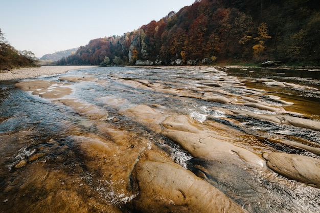 Clear river with rocks leads towards mountains. lit by sunset. the mountain river. Premium Photo
