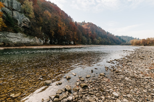 Clear river with rocks leads towards mountains Premium Photo