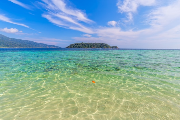 Clear water and blue sky at the paradise island in the tropical sea of thailand Premium Photo