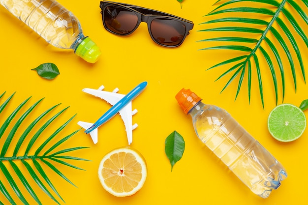 Clear water bottle and toy plane. tourism and clear water concept Premium Photo