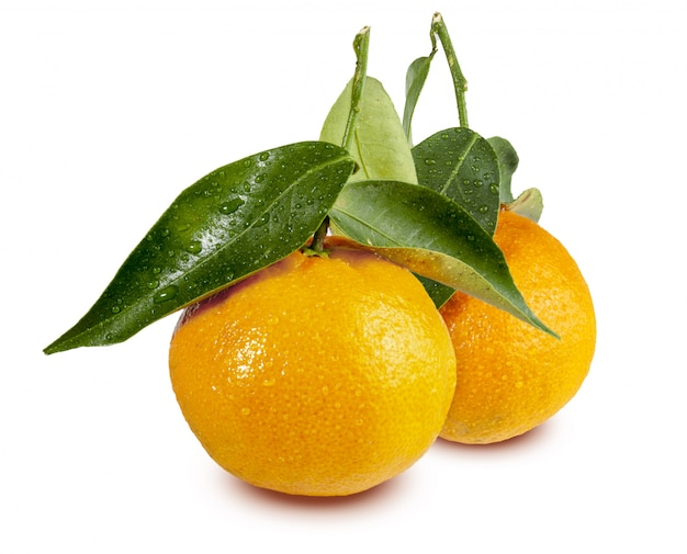Clementinas, clemenvillas, satsuma, octubrina Premium Photo
