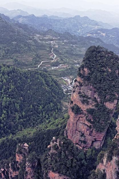木々や植物に覆われた山の横にある崖 無料写真
