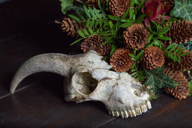 Close-up of an animal skull next to a bouquet on a wooden tabletop, selective focus Premium Photo