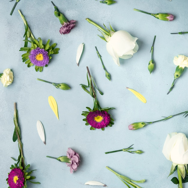 Close-up background with daisies and rose flowers Free Photo