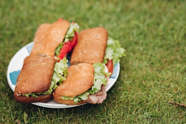 Close-up big plate with appetizing fresh sandwich on green grass Premium Photo