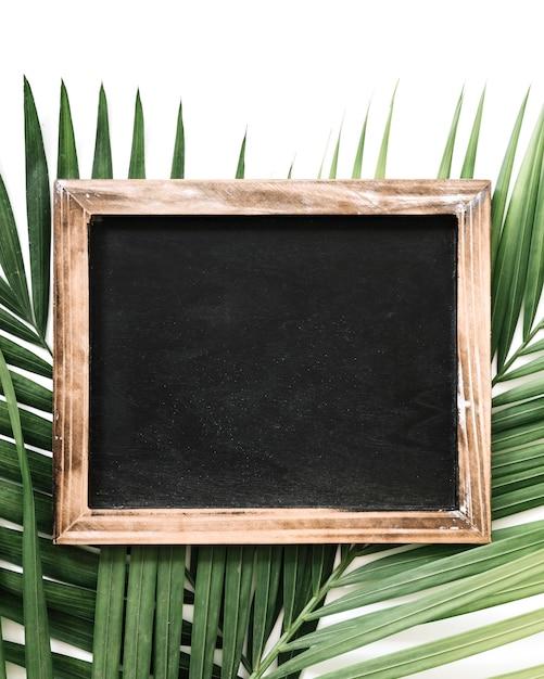 Close-up of black slate over palm leaf Free Photo