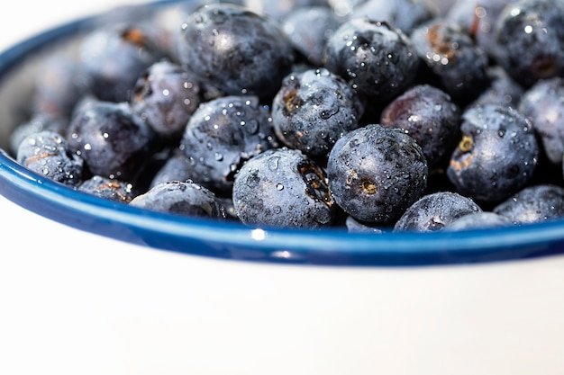 Close-up blueberries in bowl Free Photo