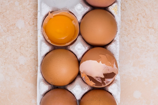 Close-up of broken eggs in white carton on texture backdrop Free Photo