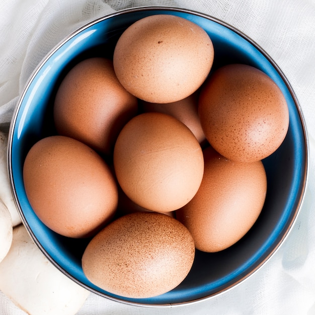 Close up brown eggs and mushroom Free Photo