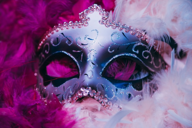 Close-up of carnival venetian mask on soft feathers Free Photo