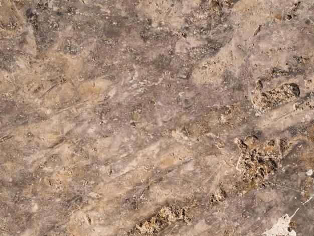 Close-up ceramic texture surface Free Photo